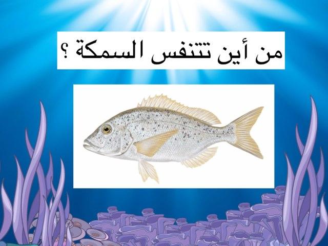 لعبة 20 by Noura Alfandi
