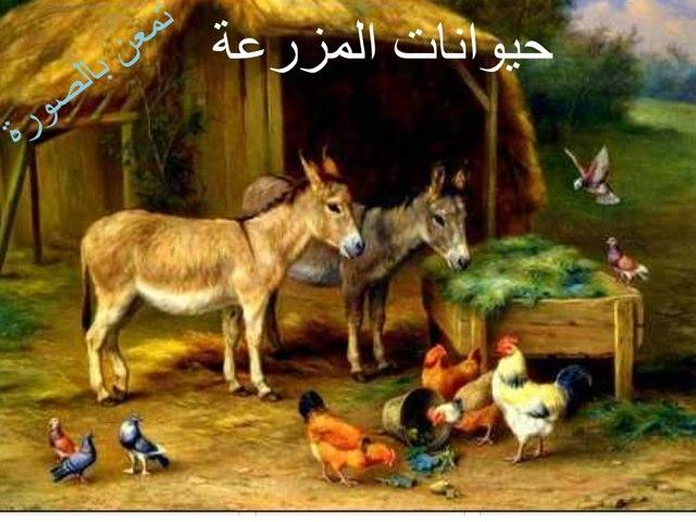 الدجاجة  by Hadool KJ
