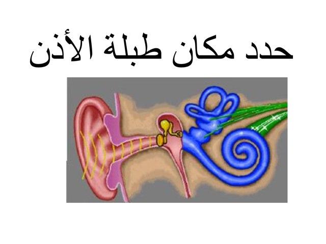 لعبة 10 by شاب مصري