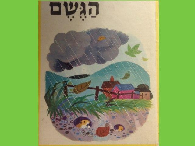 סיפור הגשם של עמית by Sara Zigelbaum