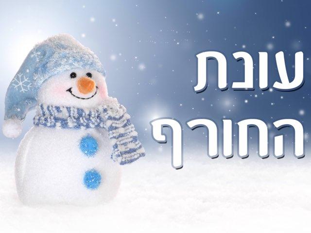עונת החורף by Lital Danoch