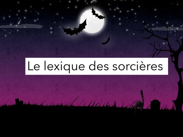 Le Lexique des sorcières  by Rémi Desmerger
