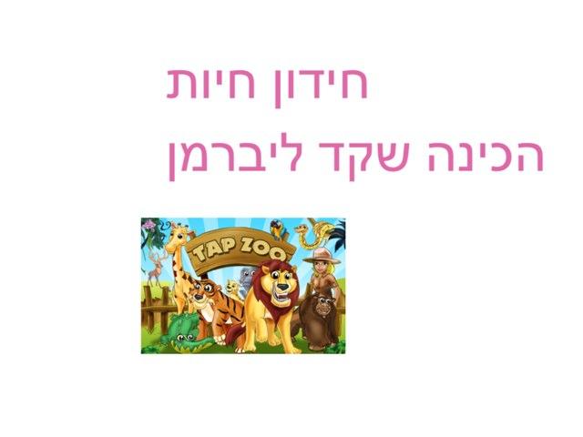 חידון חיות  שקד ליברמן by Yesod123 Yesod123