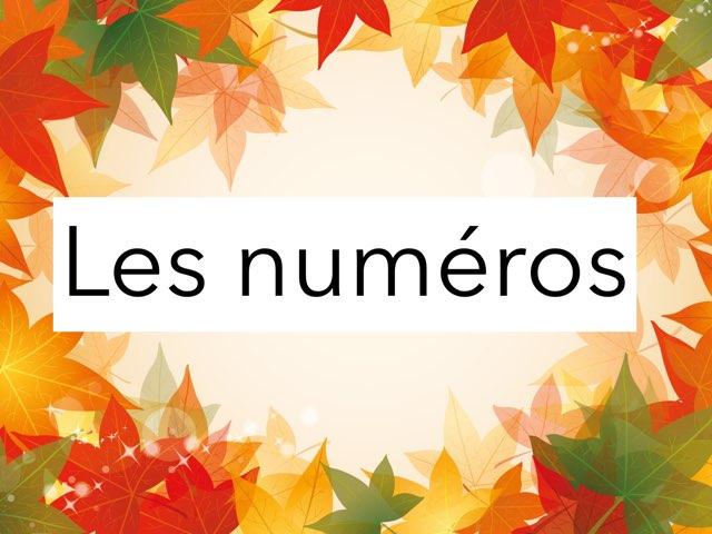 Les Numéros by Tina zita