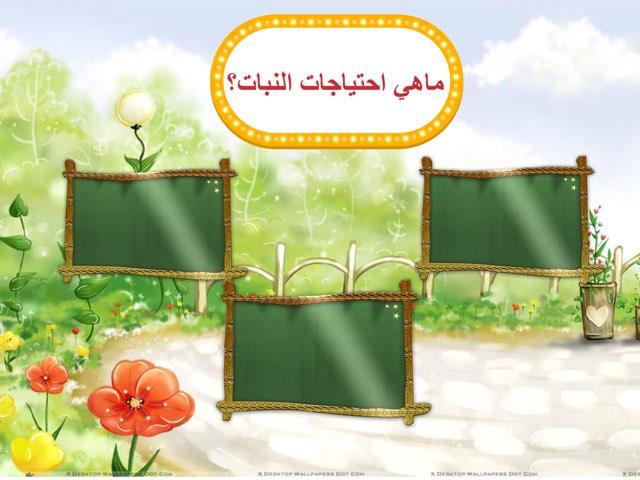 ماهي احتياجات النبات؟ by Emee Al Khashti