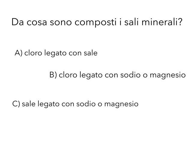 La Salinità by Elena Valenti