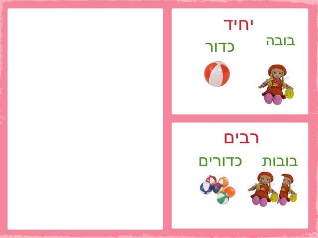 שמות עצם  ביחיד ורבים by שמע ירושלים