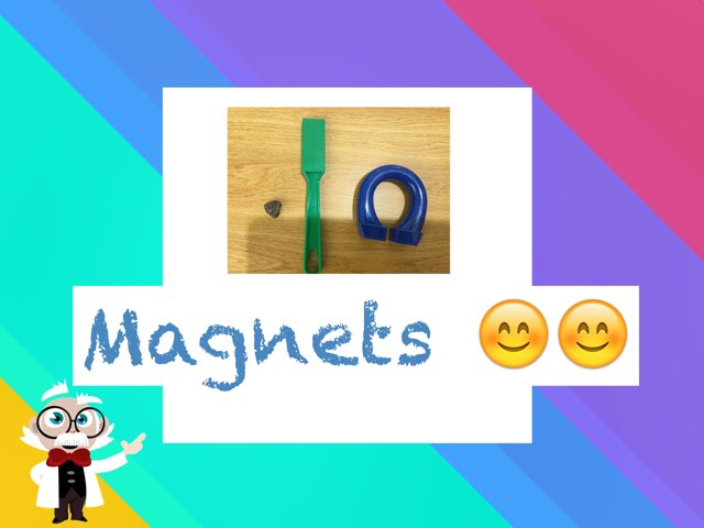 Madi's What's That Magnet? by Frances Chapin