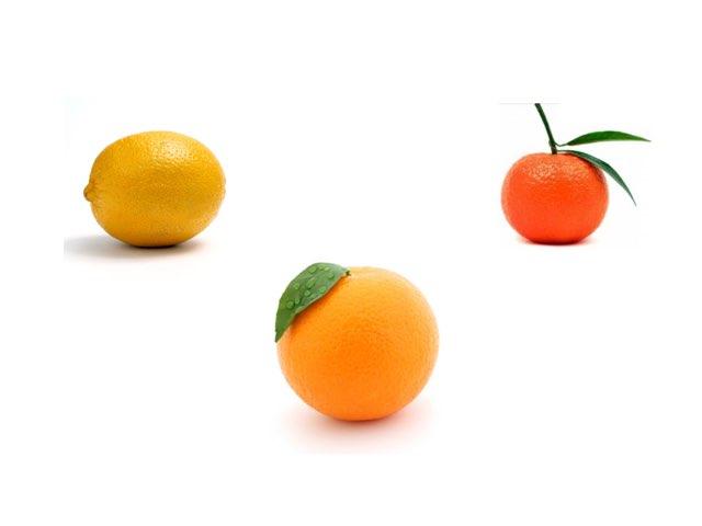 פירות הדר by אסתי שפרבר