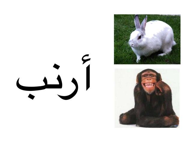 حرف الالف by Sherine Khass