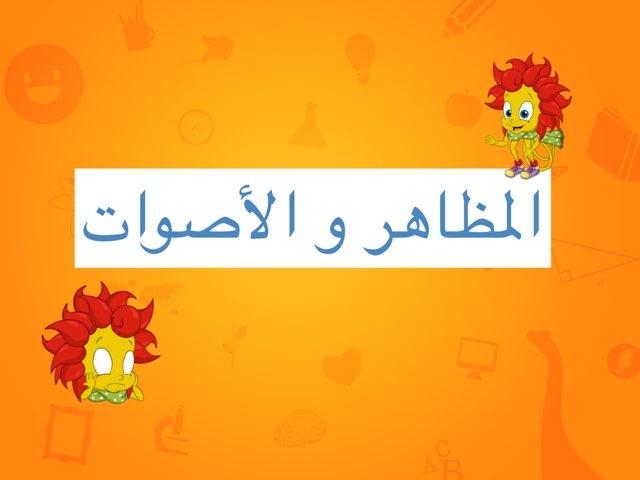المظاهر و الاصوات by Sara Alameer