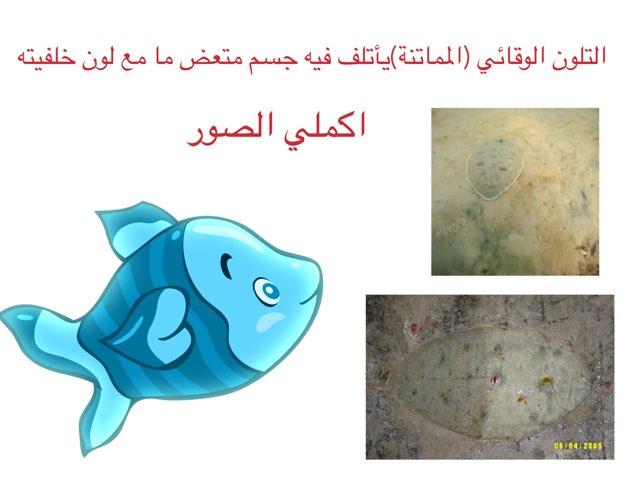 لعبة المماتنة by Ahmad ahmad