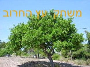 משחק עץ החרוב  by Yehonatan Ora Ben Simon