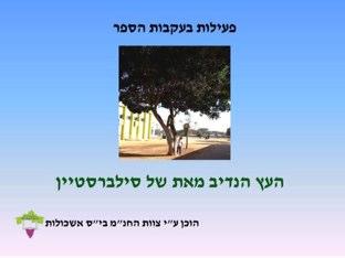 פעילות בעקבות הספר העץ הנדיב by gali bs
