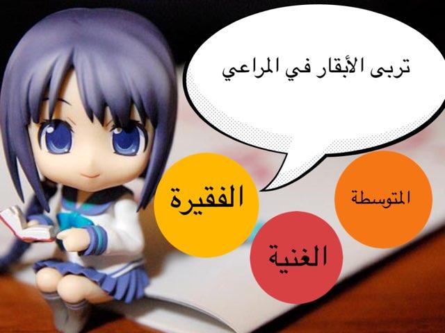 الثروة الحيوانية في الوطن العربي  by msswsn s