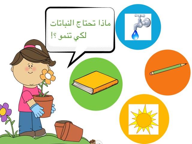 لعبة 15 by Lolwa Alanezi
