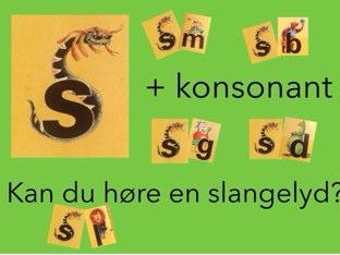 Kan Du Høre En Slangelyd? by Dorte Eriksen