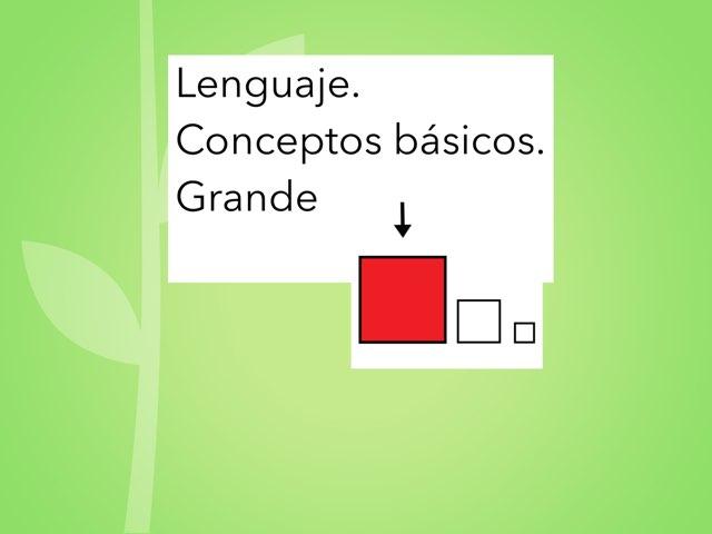 conceptos básicos/ grande by Teresa Roig