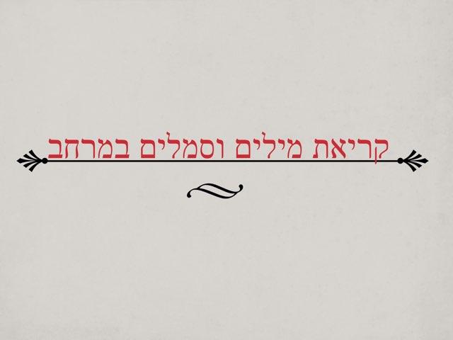 קריאת מילים וסמלים במרחב by פנינה דן