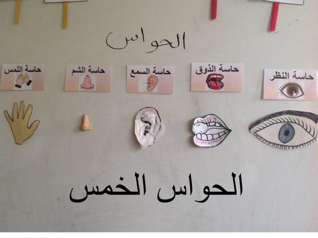 الحواس الخمس by Hadool KJ