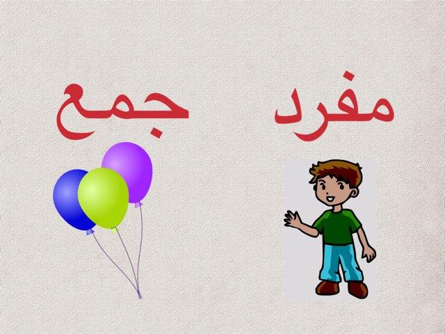 مفرد جمع by afnan gh