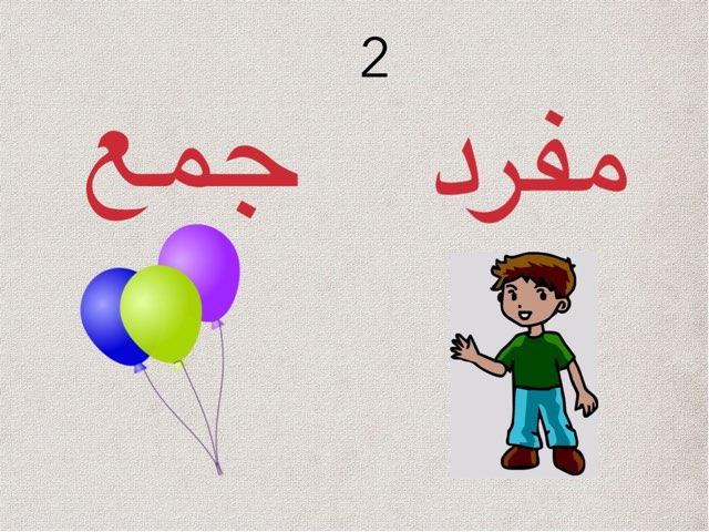 مفرد وجمع 2 by afnan gh