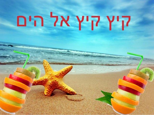 קיץ by Irina shmidt