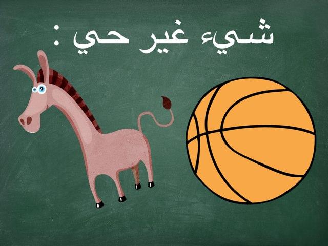 لعبة 14 by abla ohoud