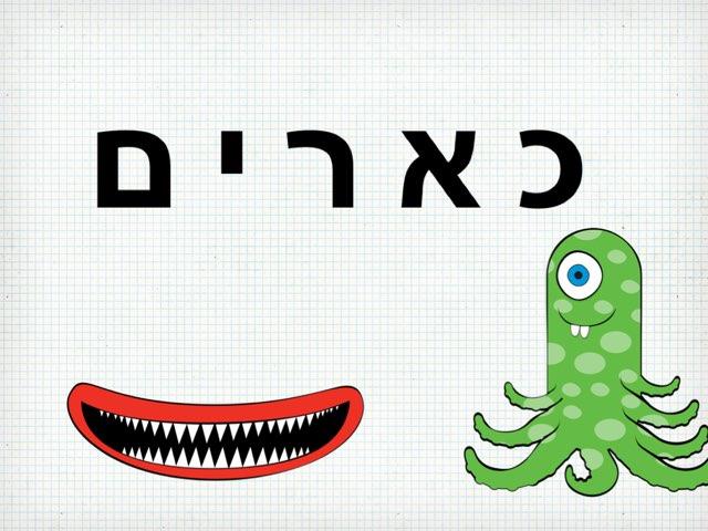 כארים by Adi Gershon