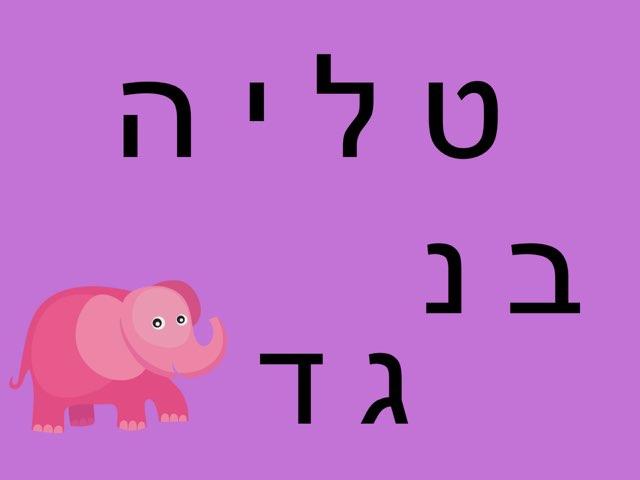 פאזל טליה by Adi Gershon