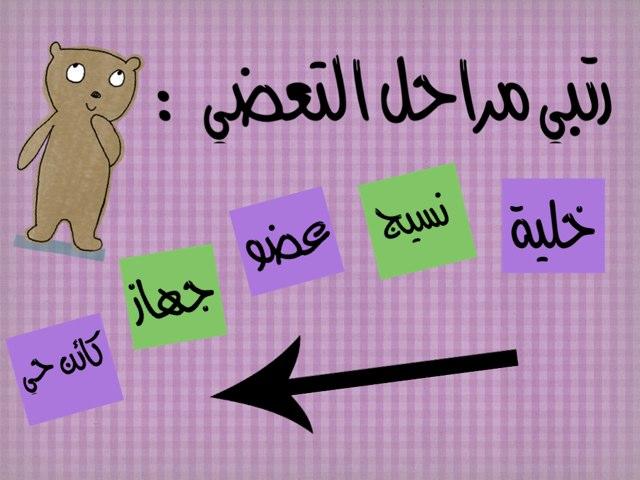 التعضي by Mai Al