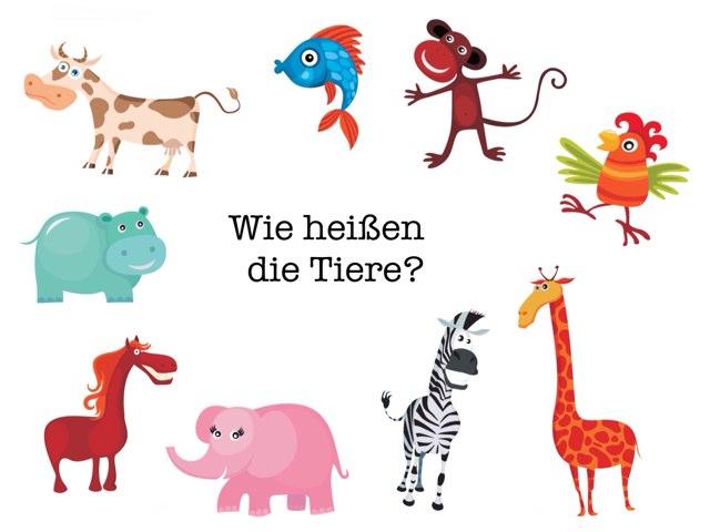 Wie heißen die Tiere? by Marina Ruß
