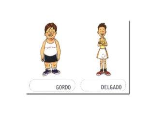 Conceptos Básicos Gordo-delgado by Quino Asensio