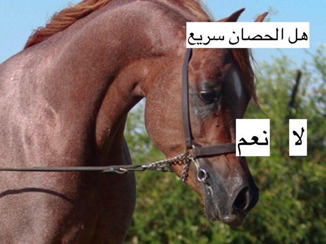 اسئله مميزات الحيوانات by عبدالله صادق