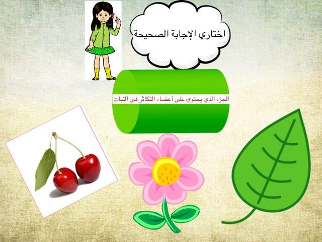 لعبة 278 by Ahmad ahmad