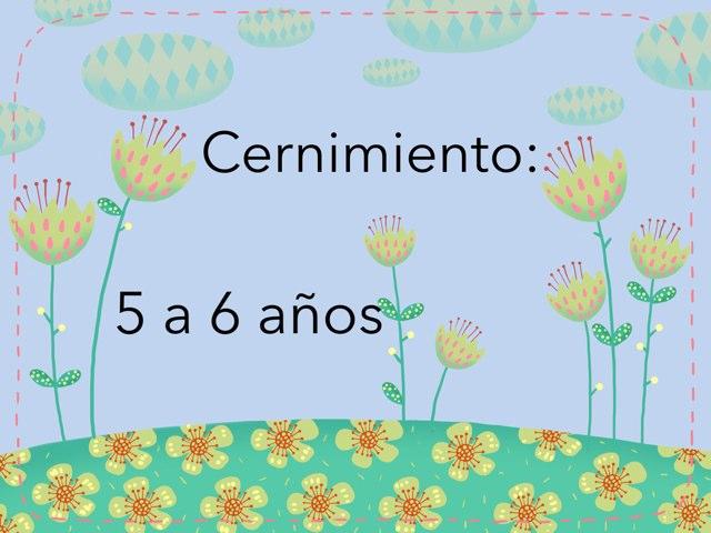 Cernimiento De 5 A 6 Años by Nicolle Rios