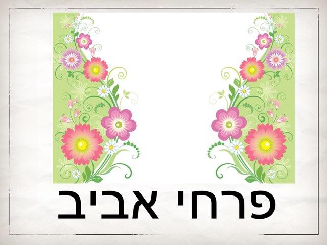 פרחי אביב by אורנה הולצר