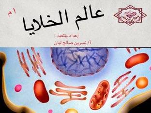 عالم الخلايا  by Nesreen saleh