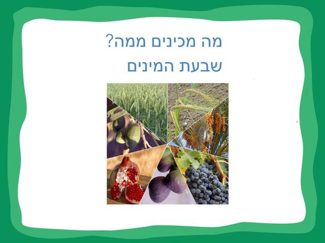 תוצרי  פירות שבעת המינים by karina lvovsky