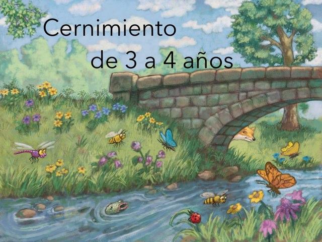 Cernimiento De 3 A 4 Años by Nicolle Rios