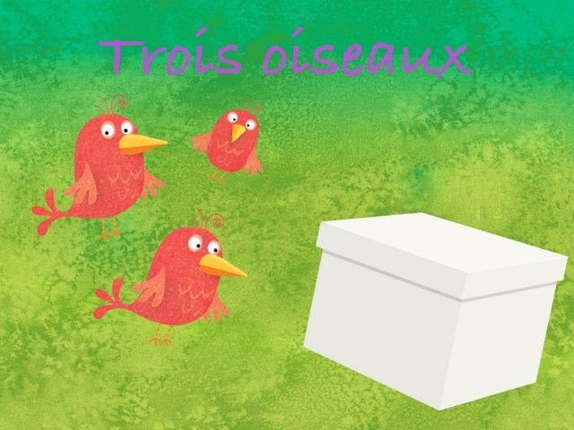 La Boîte Aux Oiseaux by Lacaille Noémie