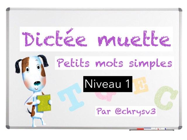 Dictée Muette Niveau 1 by Christelle Victorin