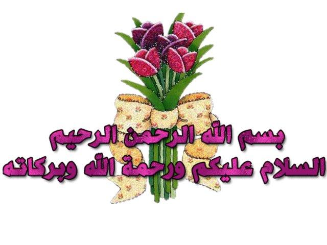 العلوم نور آل سليس by Noor  al-Sulais