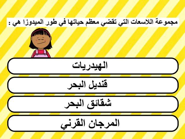 اسئلة موضوعية للصف الثامن الفترة الثالثة by mariam yousef