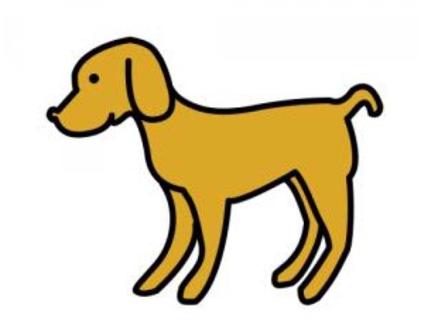 צורות בתמונת כלב  by זינב חגלי