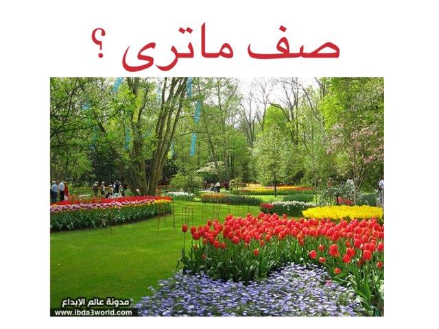 ورودي وازهاري الجميلة by Alshlkah F hd
