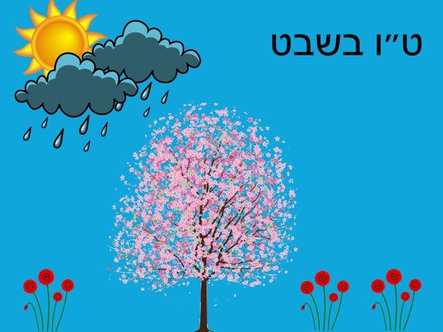 ט״ו בשבט by Anat Rizenman Beit Issie Shapiro