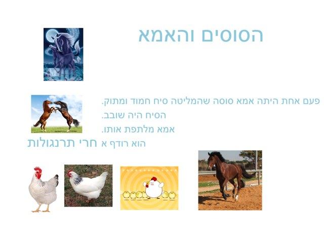 הסוס by Nadine Lasry