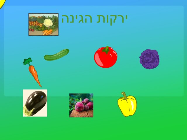 ירקות וצבעים by עדה ימה בינדר