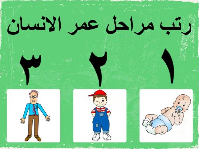 مراحل عمر الانسان by Moony Alshamry